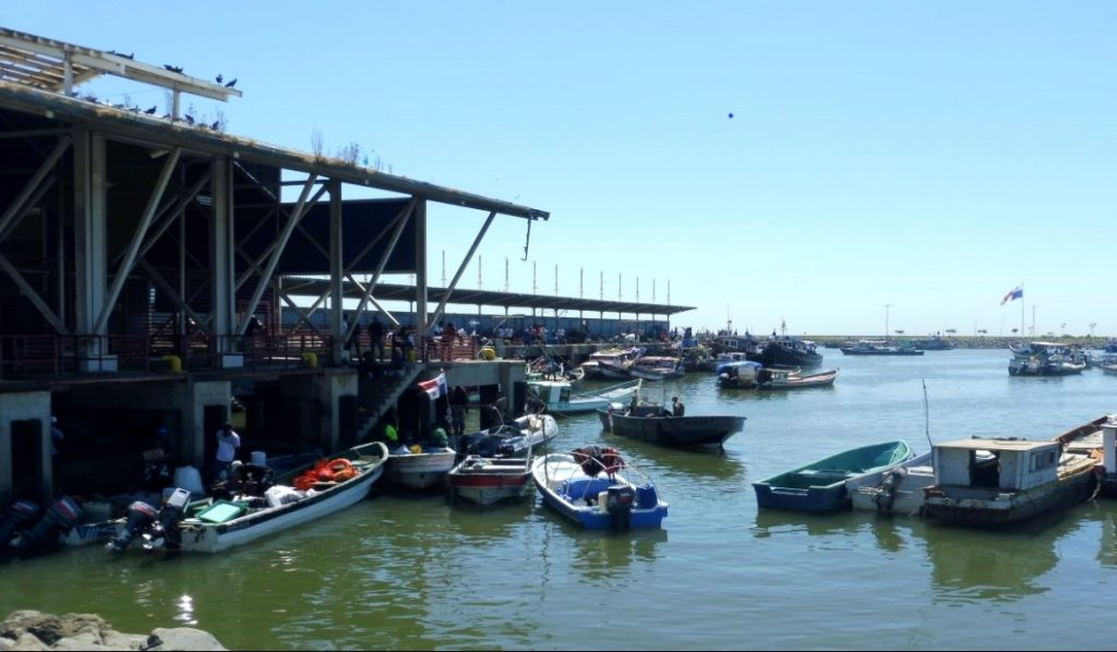 Short and perfect holidays in Panama: seafood market