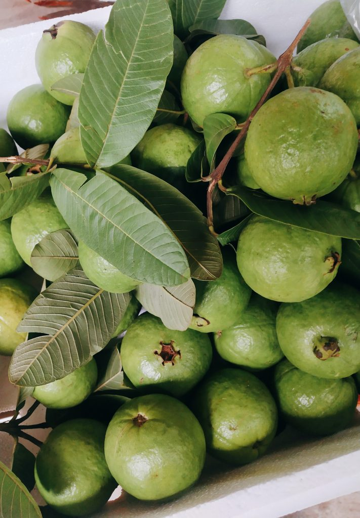 Best fruits of Asia guava