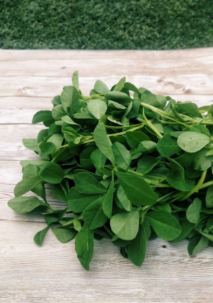 Secrets of the Best Ayurvedic Herbs Methi