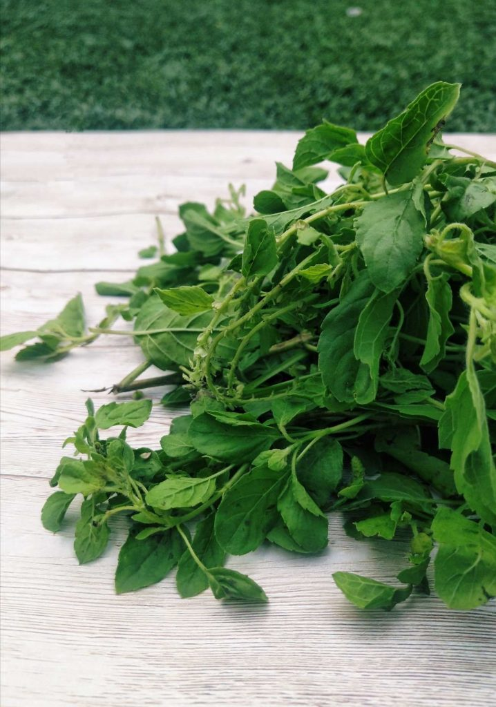 Secrets of the Best Ayurvedic Herbs Tulsi