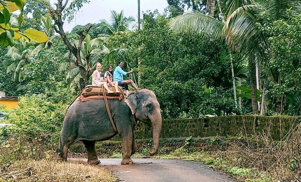 Goa Ponda Elephant Ride